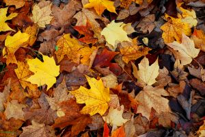 fall fire safety tips for NJ homeowners