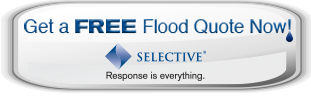 Selective Flood Quote it Now image